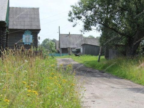 derevnya-ozerki-gorodskoy-okrug-bor фото