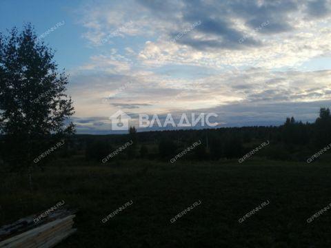 selo-chernuha-kstovskiy-rayon фото